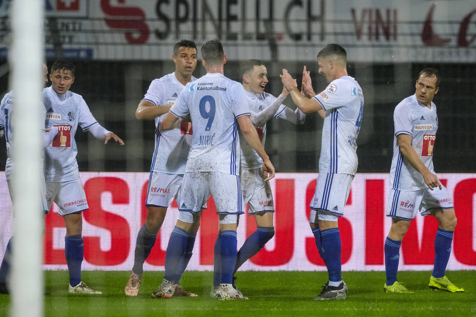 Jubelnde Luzerner beim Spiel gegen den FC Lugano.