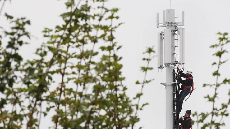 Die Anwohner von Zeiningen wollen keine Antenne vor der Haustüre.