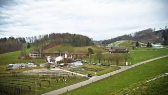 Zwei Tage sollen die Flüchtlinge im Landwirtschaftlichen Zentrum Liebegg, drei Tage auf dem Bauernhof ausgebildet werden.