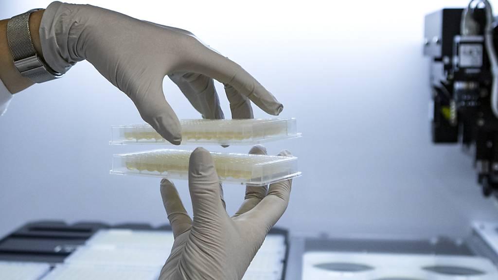 Der Bund unterstützt die Forschung am Biotechnologie-Institut Thurgau in Kreuzlingen in den nächsten vier Jahren mit 3,1 Millionen Franken (Symbolbild).
