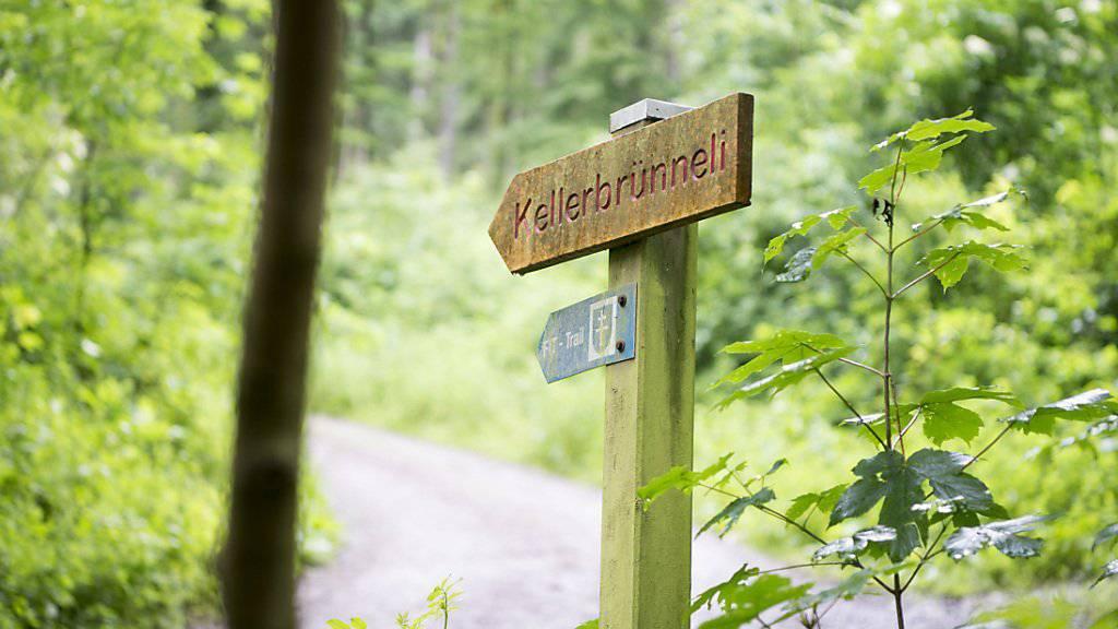 Tötungsdelikt im Wald von Fislisbach AG: Der zur Tatzeit minderjährige Schweizer wurde gemäss Jugendstrafrecht zur Maximalstrafe verurteilt. (Archivbild)