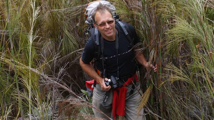 """Niklaus Zimmermann 2008 in der Nähe des """"Groot Swartberg Pass"""" am Rande der Kleinen Karoo in der Republik Südafrika. Zusammen mit Kollegen erhob er dort auf der Südhemisphäre Daten einer grasartigen Pflanzenart. Auf dem Bild steht er in einem """"Wald"""" von Cannomois grandis, einer der grössten südafrikanischen Grasarten."""