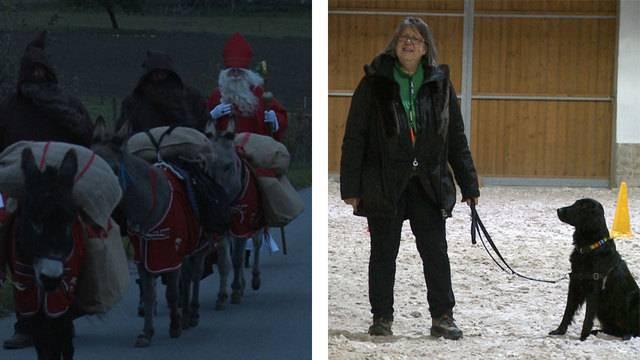 Samichlaus-Training / Nationales Hundehalter Brevet NHB