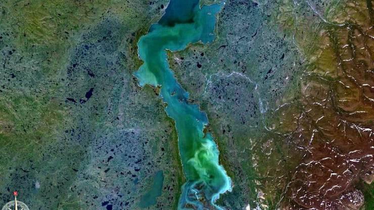 Nach einem Kraftwerk-Störfall ist Dieselöl in den Pjasino-See in der russischen Region Krasnojarsk gelaufen. Alle bisherigen Barrieren haben versagt. Ziel ist es nun, den Abfluss in den Pjasina-Fluss zu verhindern, da dieser für die Wasserversorgung elementar ist. (Bild Nasa)