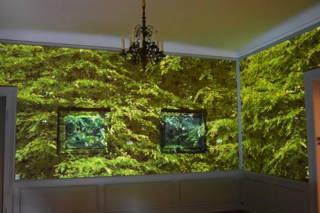 Mit Videoprojektionen holen die Künstler die Natur in die Villa und lassen die Besucher die Ruhe der Wälder geniessen.