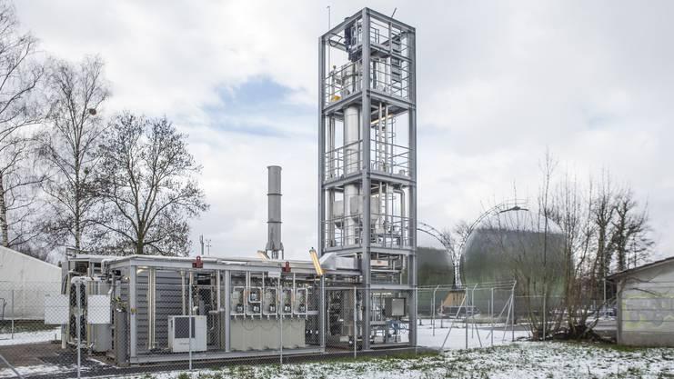 Im Bioreaktor im Turm rechts wohnen die 700 Billiarden Archäen.