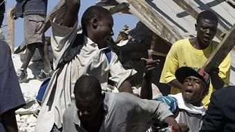 Gewalt unter den verzweifelten Überlebenden nimmt zu