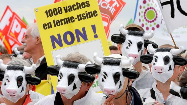 Umweltschützer protestierten von Anfang an gegen die «Kuhfabrik» in Nordfrankreich.Pascal Rossignol/reuters