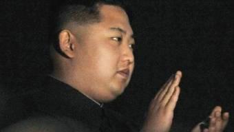 Für viele der zukünftige Herrscher Nordkoreas: Kim Jong-un.
