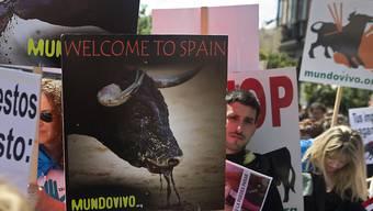 Die Diskussion über die Stierkämpfe entzweit das Land. Für viele Spanier ist Stierkampf eine Kunst und Symbol des Landes. Für Gegner des Brauchtums ist das umstrittene Spektakel schlichtweg brutale Tierquälerei, bei der die Stiere oft zu Tode gefoltert werden.