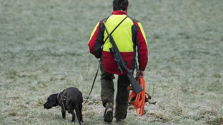 Die Baujagd mit Hunden auf Füchse und Dachse wird im Thurgau verboten.