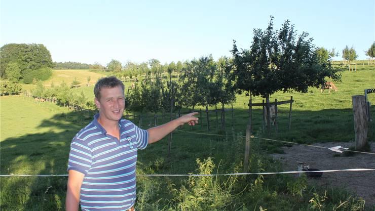 Viel spannendes Fachwissen erhielten die Teilnehmer der Flurbegehung in der «Oase» von Philipp Vogel in Mühledorf.