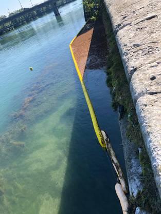 Die Absperrung in der Aare, in braun der oben aufschwimmende Ölbinder.