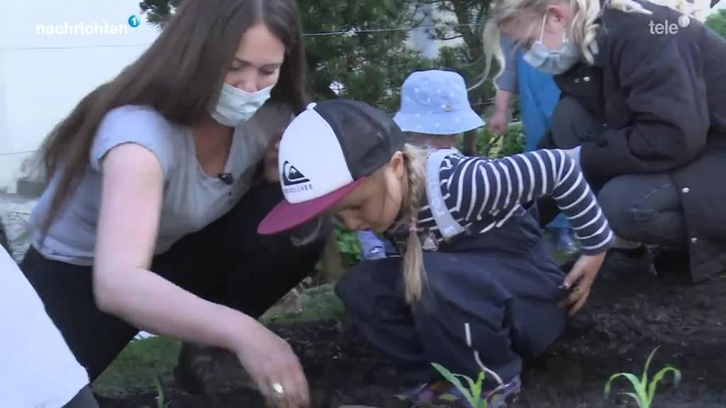 Kita-Gartenprojekt soll Bezug zur Natur fördern