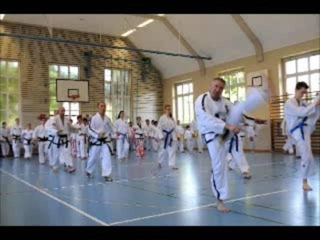 Training mit Hwang Su Il