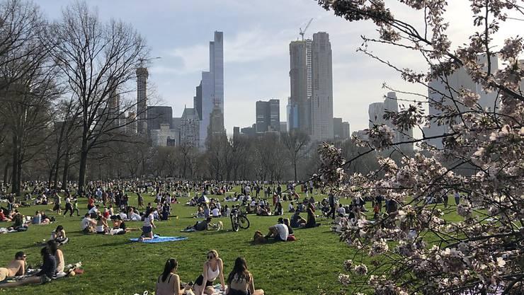 Mehr als 40 Millionen Menschen kommen jedes Jahr in den New Yorker Central Park - nur rund 2,5 Millionen schauen jedoch am Nordende vorbei. Dieses soll nun aufgewertet werden. (Archivbild)