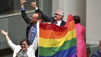 Parlamentsmitglieder Australiens freuen sich, dass die gleichgeschlechtliche Ehe zugelassen wird.