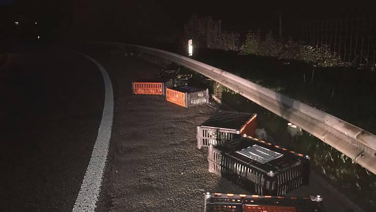 Weil ein Lastwagen einen Teil seiner geladenen Kisten mit Masthühnern verlor, machten am Freitagmorgen früh einige Hühner einen kurzen Ausflug auf die A2 bei Sissach BL.