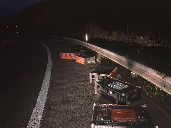 Ein Sattelschlepper verliert auf der Autobahn rund 20 Kisten Masthühner. Einige Kisten öffnen sich, die Hühner flattern herum – und wurden teils von nachfolgenden Autos erfasst und überfahren.