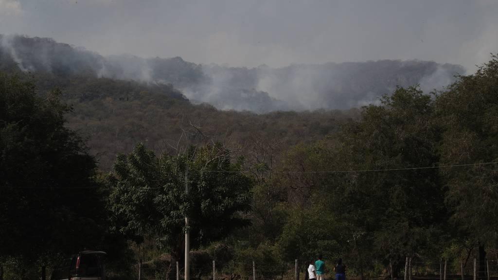 Boliviens Präsident verläuft sich bei Löscheinsatz im Urwald