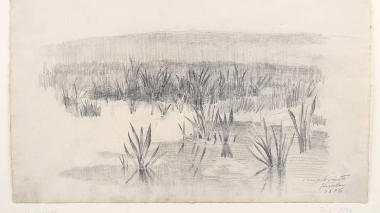 «Der Teich» von Lovis Corinth: Die jüdische Witwe des Künstlers schenkte das Werk dem Kunsthaus Zürich 1935.