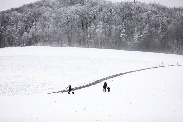 Im Schnee ist es doch am Schönsten.