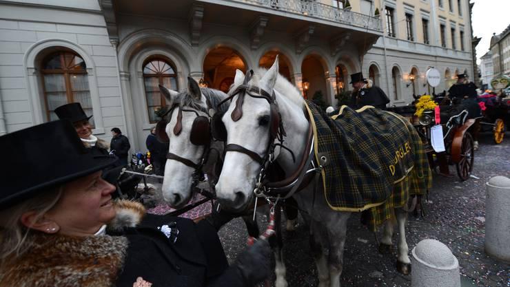 Fast 40 Pferde waren 2017 im Einsatz – allerdings noch ohne neue Auflagen.