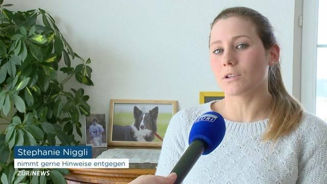 Therapiehund verschwunden