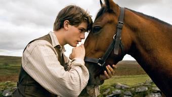 Der Trailer zu Steven Spielbergs neuem Film «War Horse» – «Gefährten»
