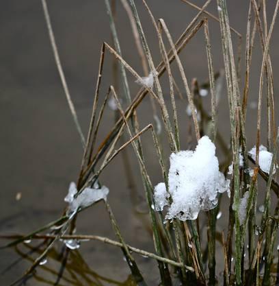 Winter an der Suhre