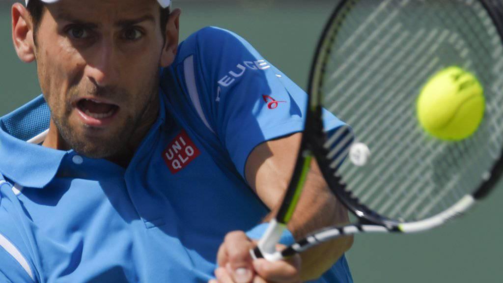 Fokussierter Novak Djokovic fegt im Final Milos Raonic in 78 Minuten mit 6:2, 6:0 vom Platz