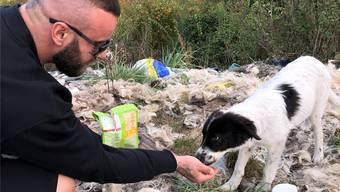 Futter und etwas Zuneigung: Das bekommen die Tiere von Bruno Jelovic.