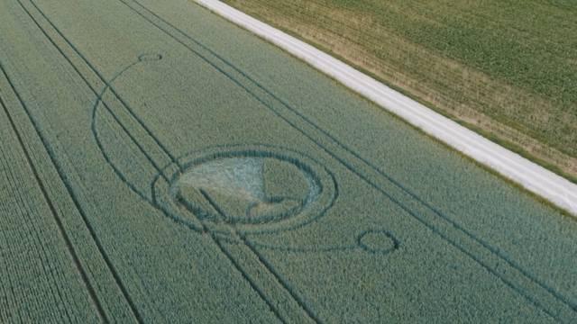 Wer wirklich hinter dem mysteriösen Kornkreis steht