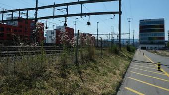Erst kürzlich unterzeichneten die Stadt Schlieren, die Geistlich Immobilia und weitere Anstösser eine Absichtserklärung, wonach die Wiesenstrasse gemeinsam entwickelt werden soll. Auch die Veloschnellroute soll hier durchführen.