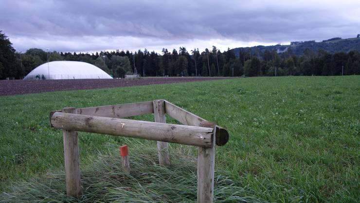 Messpunkt mit denen die Erdbewegungen in der aufgefüllten Kiesgrube Tägerhard kontrolliert wird. Auf dem Areal ist der Fussballplatz geplant.