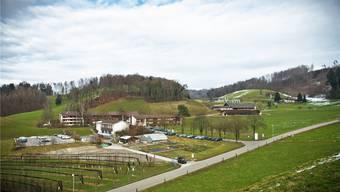 Hier, in der landwirtschaftlichen Schule Liebegg, will der Kanton 60 Asylsuchende unterbringen.Annika Bütschi
