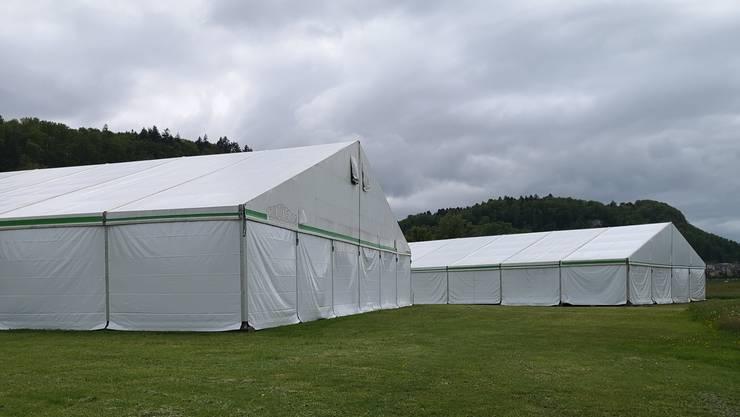Fünf Zelte stehen schon.
