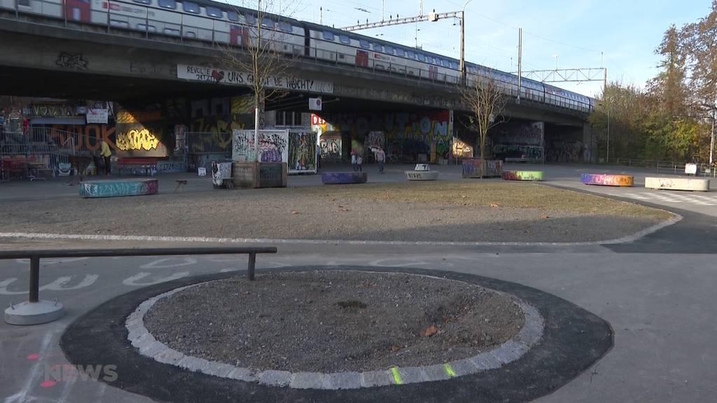 Stadt Bern testet verschiedene Baum-Arten gegen Hitze