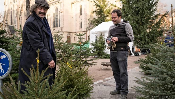 Tannenbaum Preise.O Tannenbaum Wo Kauf Ich Dich Hier Finden Sie Ihren Weihnachtsbaum