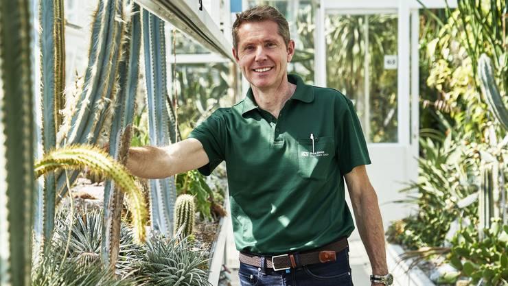 Obergärtner Balz Schneider kümmert sich seit sieben Jahren um die Pflege der verschiedenen Sukkulenten in der Sammlung. Hier ist ein kleiner Vorgeschmack zu den insgesamt 5500 Pflanzen.