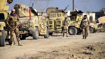 Die irakische Armee rückt in der vom IS gehaltenen Stadt Ramadi ein