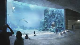 Der Grosse Rat sagte am Mittwoch deutlich Ja zum Ozeanium-Projekt des Basler Zoos.
