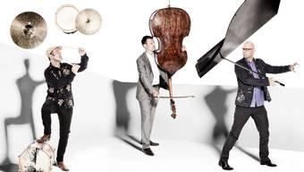 Immer wieder Lust, den klassischen Trio-Jazz auszuweiten: Vein mit Florian Arbenz, Thomas Lähns und Michael Arbenz (von links).