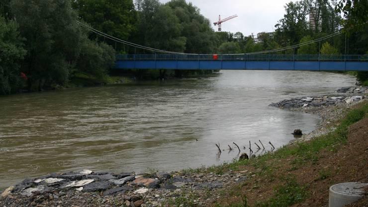 Rundgang bei den Limmatauen zwischen Werdinsel und Autobahnbrücke Oberengstringen.