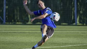 Drei Millionen Franken für einen Perspektivspieler: Andraz Sporar.