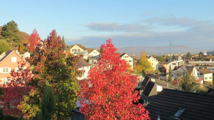 Doch schön der Blick auf das Dorf Frenkendorf.