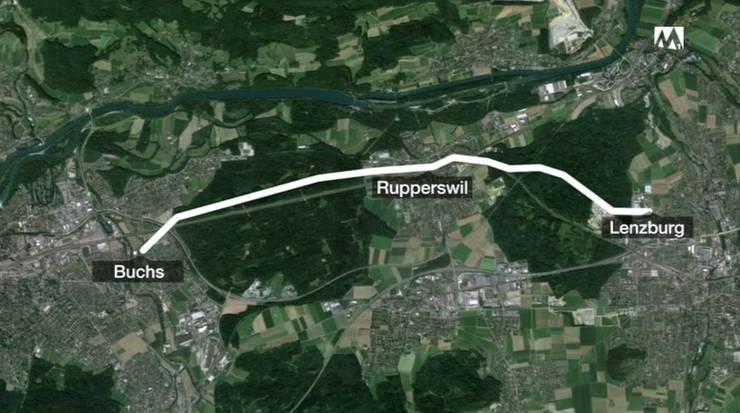 Das ausgebüxte Lama legt 8 km von Lenzburg nach Buchs zurück, ehe es eingefangen wurde.
