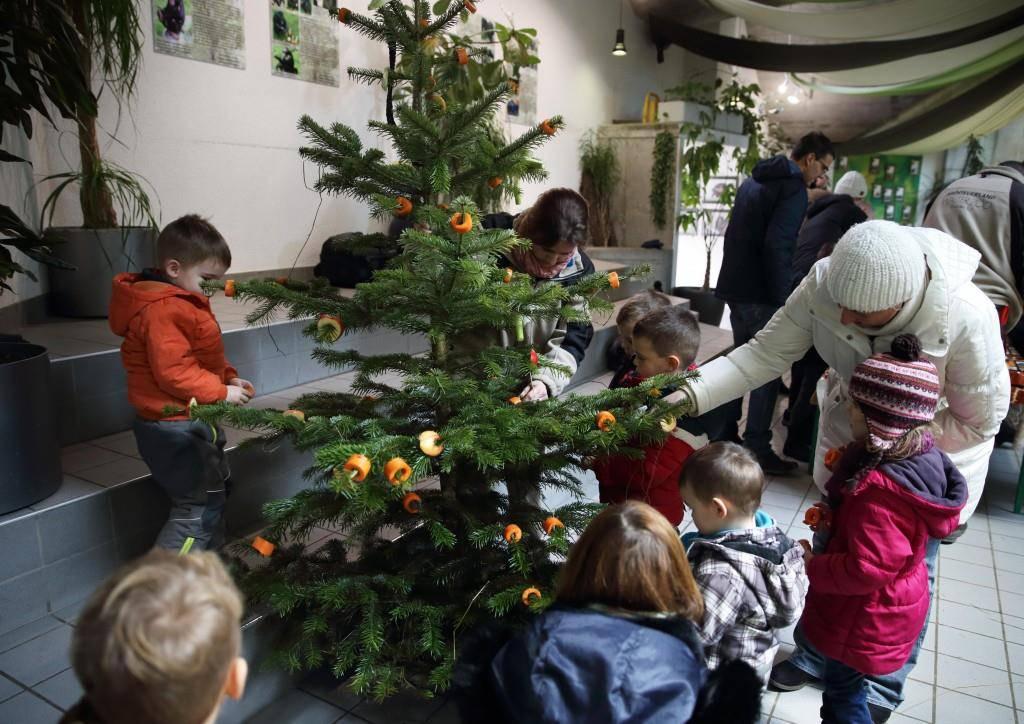 Die Kinder durften die Geschenke für die Tiere einpacken.