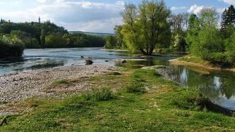 Das Naturschutzgebiet von Pro Natura beim Zusammenfluss von Aare und Limmat.