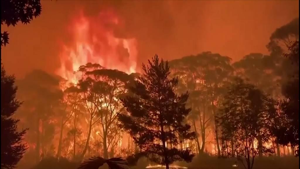 Bis zu 70 Meter hohe Flammen: Kein Aufatmen in Australien